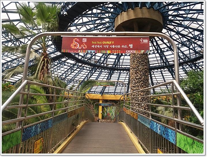 동물원11