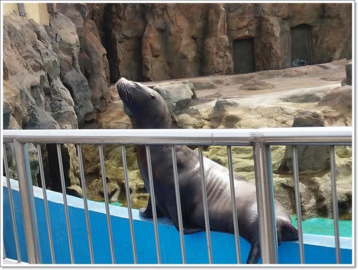 동물원26