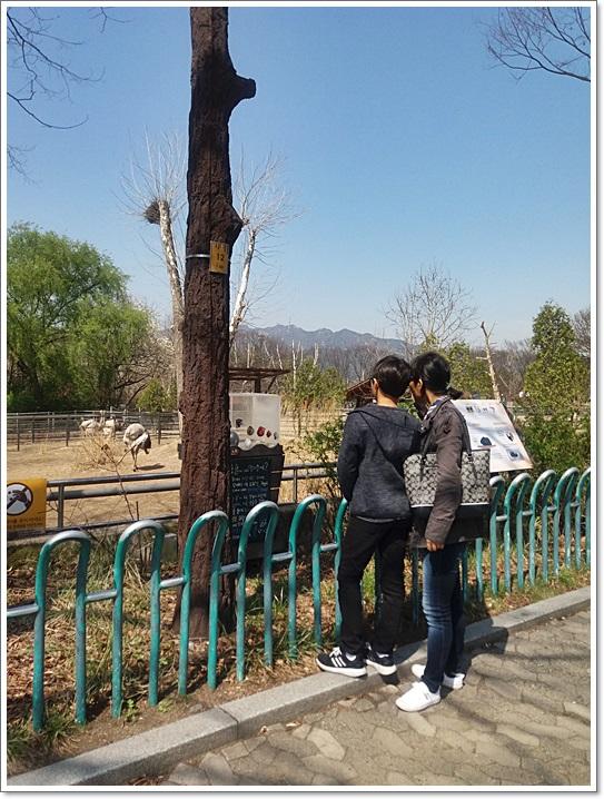 동물원34