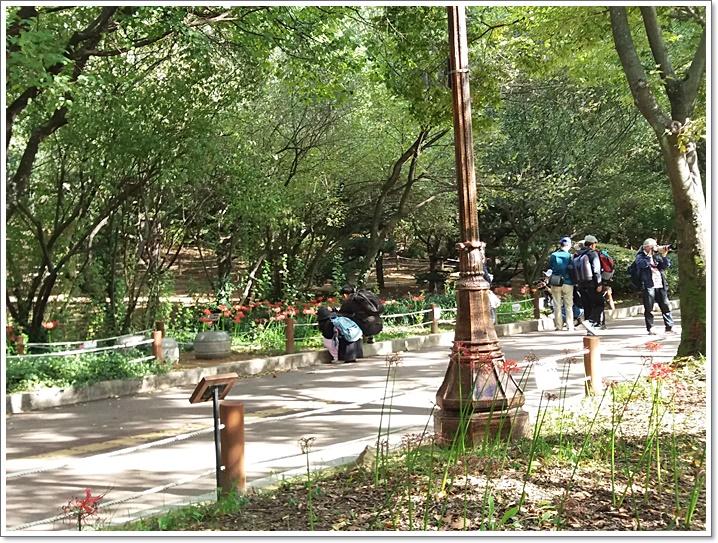 중앙공원12