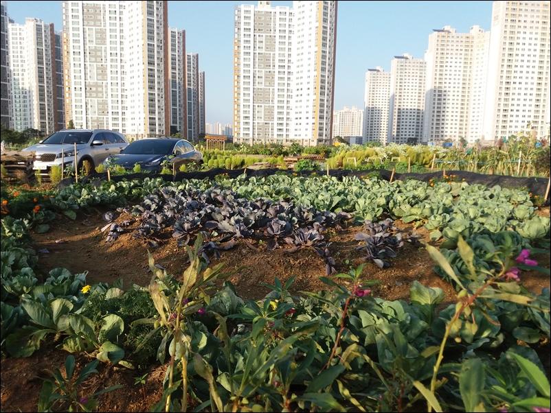 농업공원12