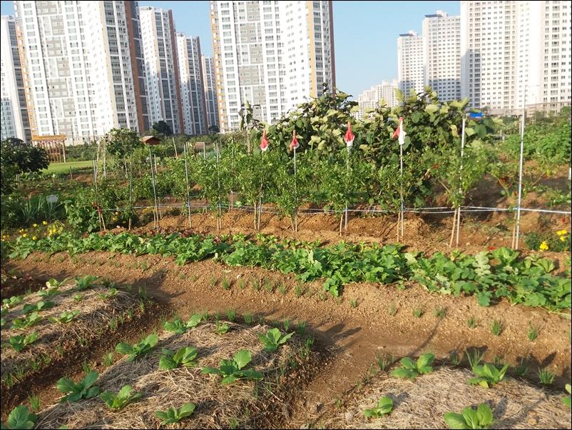 농업공원15