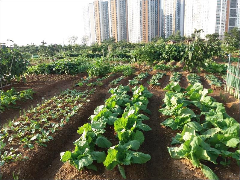 농업공원6