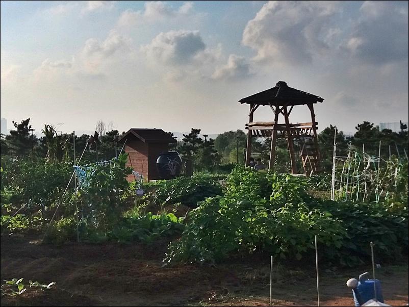 농업공원7