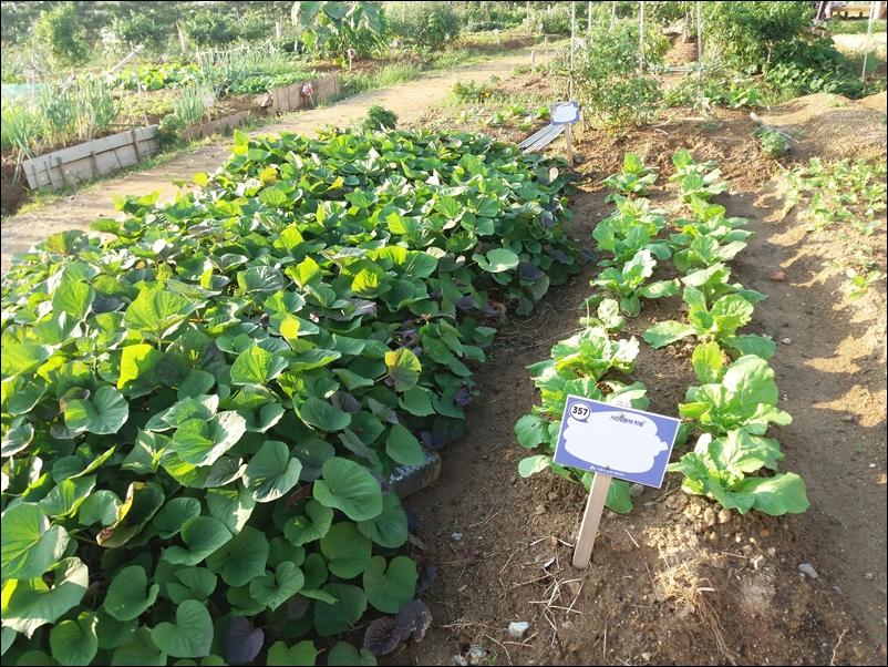 농업공원8