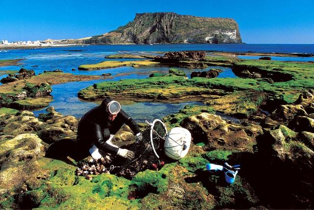 2007년 6월 27일 뉴질랜드에서 열린 유네스코 세계자연유산위원회 총회에서 세계자연유산 등재가 확정된