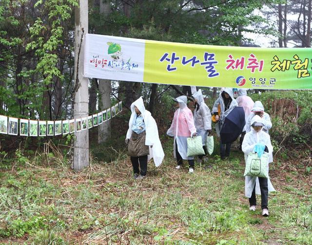 12.김상수씨 산나물체험 사진.jpg