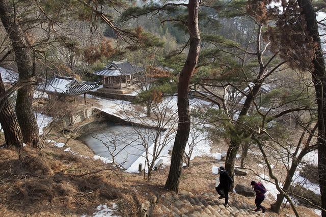 부용당 앞  연못.JPG