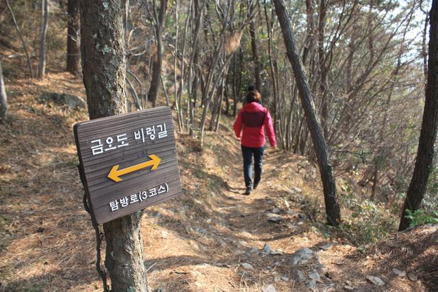 4.비렁길 동백숲길.JPG