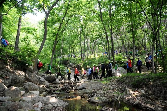 04_새로 개통된  둘레길을  걷고 있는  참가자들이  계곡물을  건너고 있다.JPG