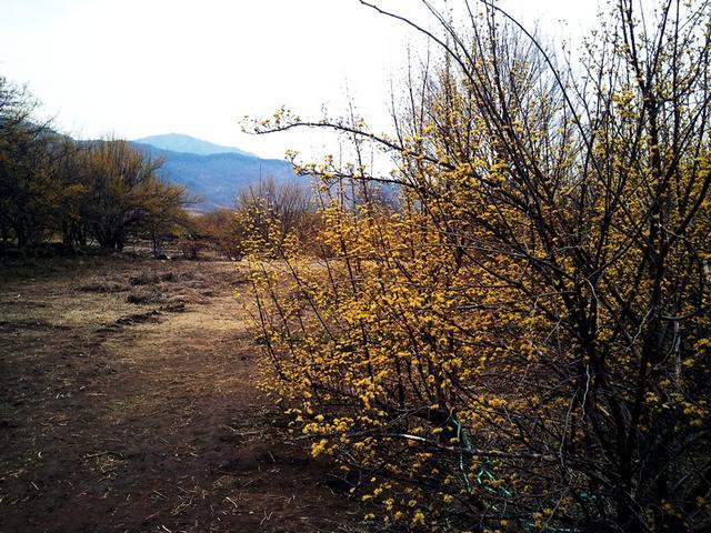 C360_2011-03-21_13-44-46.jpg
