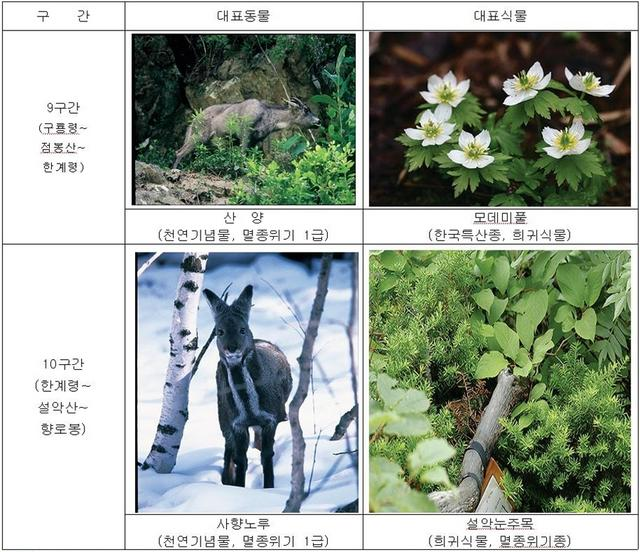 5-crop.JPG
