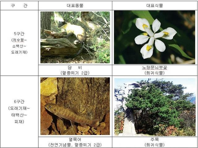 3-crop.JPG