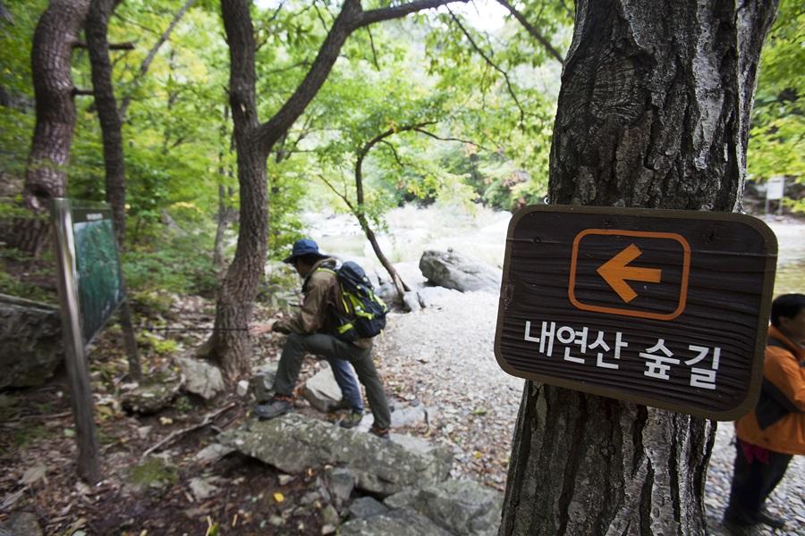포항시청 도시녹지과 정성진씨가 이정표를 보고 내연산숲길에 대해서 설명하고 있다.