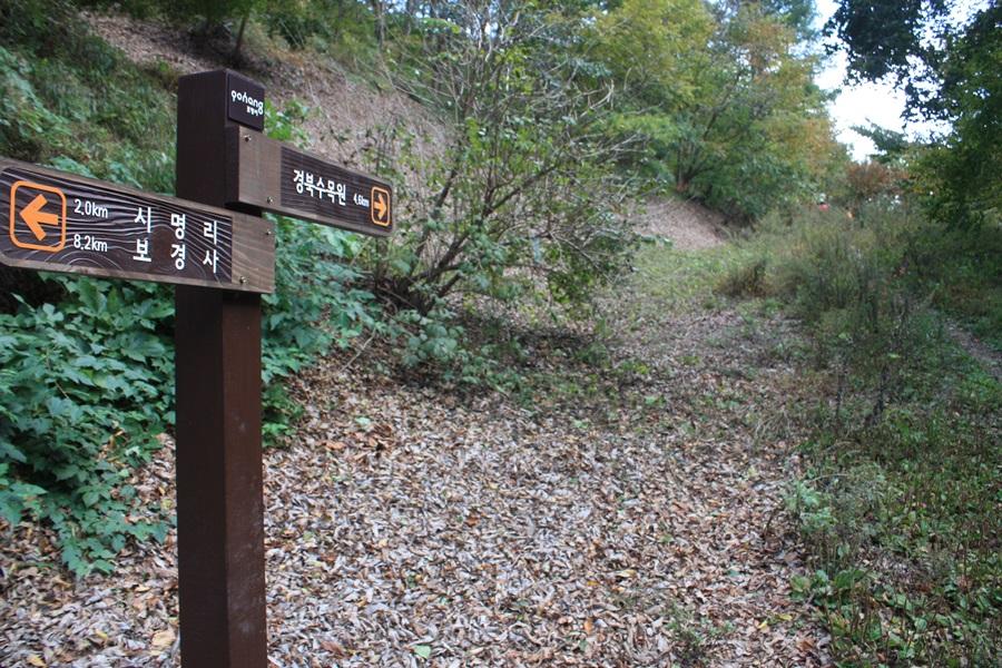 폭포가 끝나면 전형적인 숲길이 나오고 곧이어 임도로 이어진다.