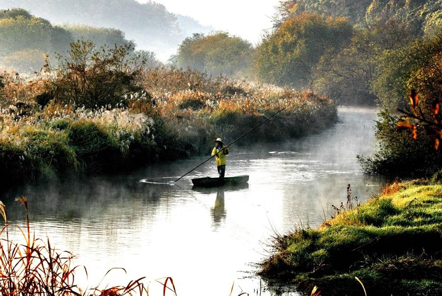 우포늪에서 물안개가 자욱하게 스며든 새벽 장대배를 몰고 한 어부가 고기 잡으러 나가고 있다.