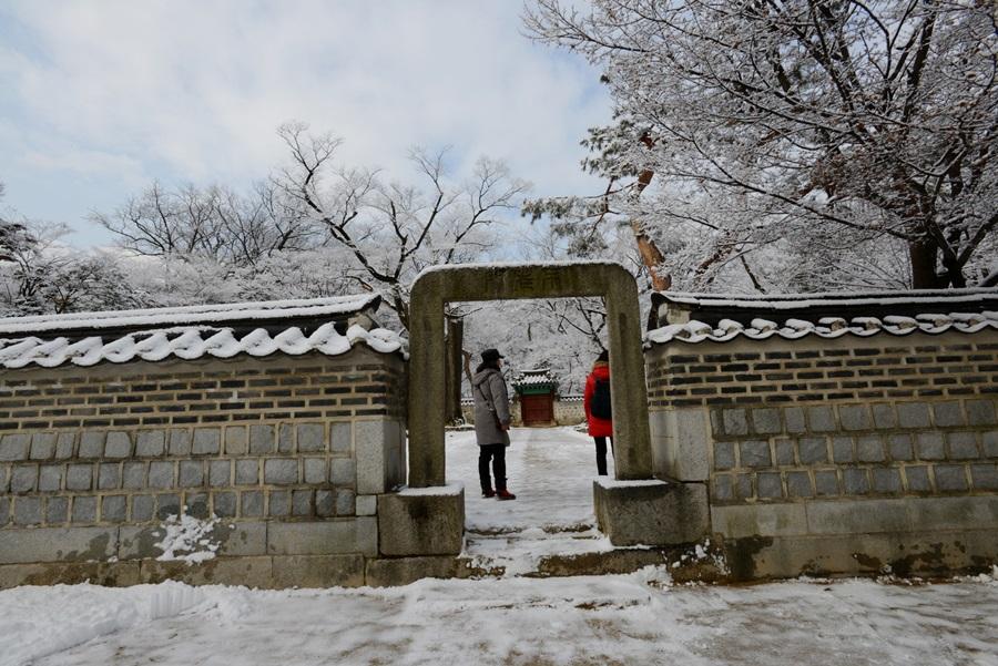 눈 쌓인 겨울에도 창덕궁을 보기 위해 많은 방문객이 찾는다.