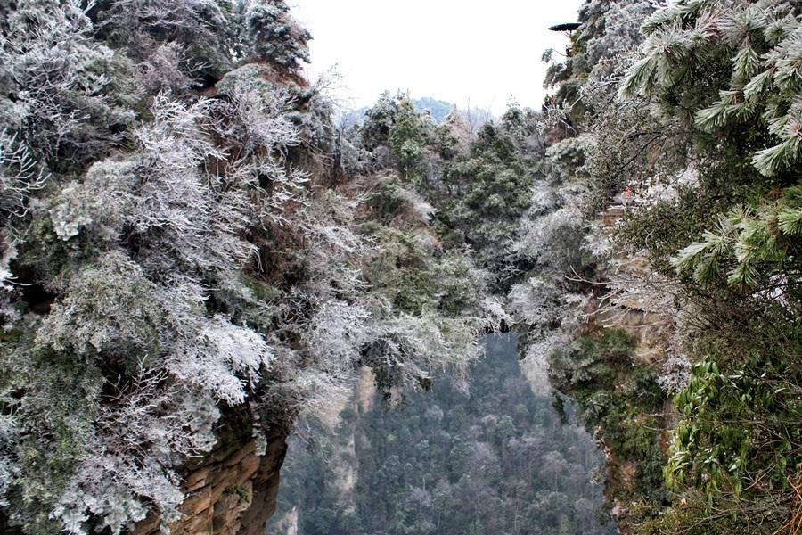 무릉원의 봉우리와 봉우리가 자연적으로 연결된 다리를 만들었다. 천하제일교라 부르는 다리 위로 사람들이 다니고 있다.