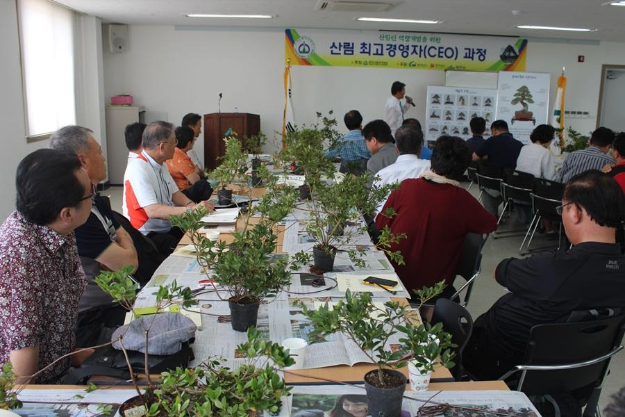 산림 최고경영자과정을 수강한 사람들이 책상 위에 화분을 놓고 책과 비교해가며 실습하고 있다.