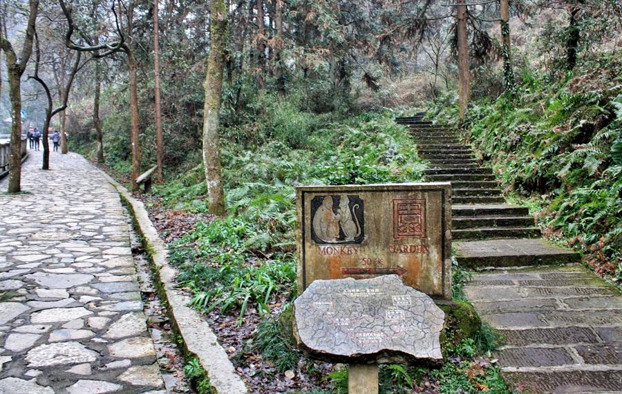 보봉호 올라가는 길에 원숭이공원이 있다.