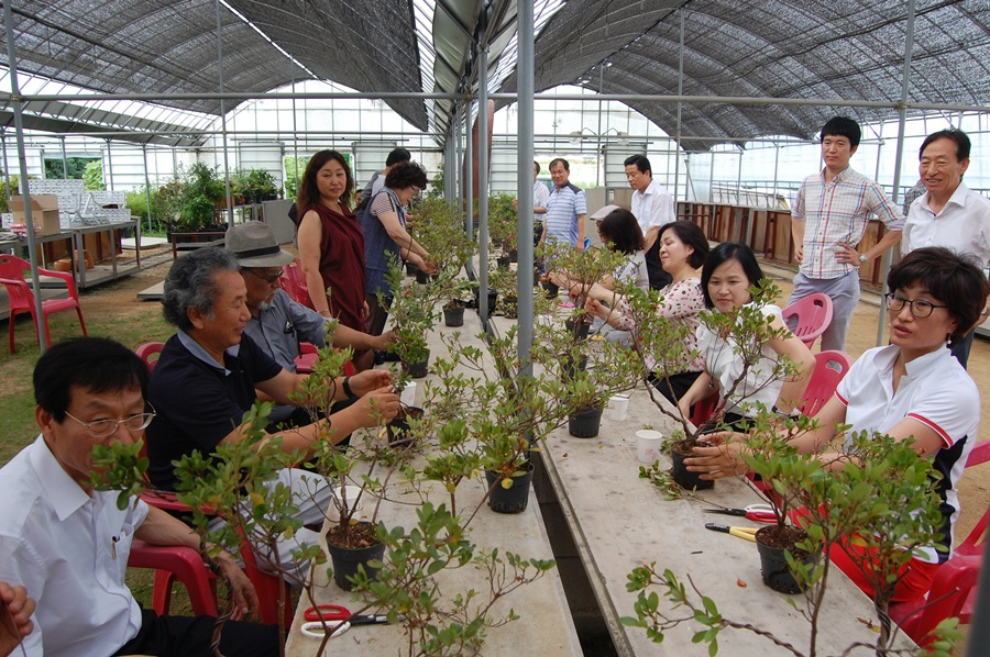 한국산림아카데미 수강생들이 화분만들기를 실습하고 있다.