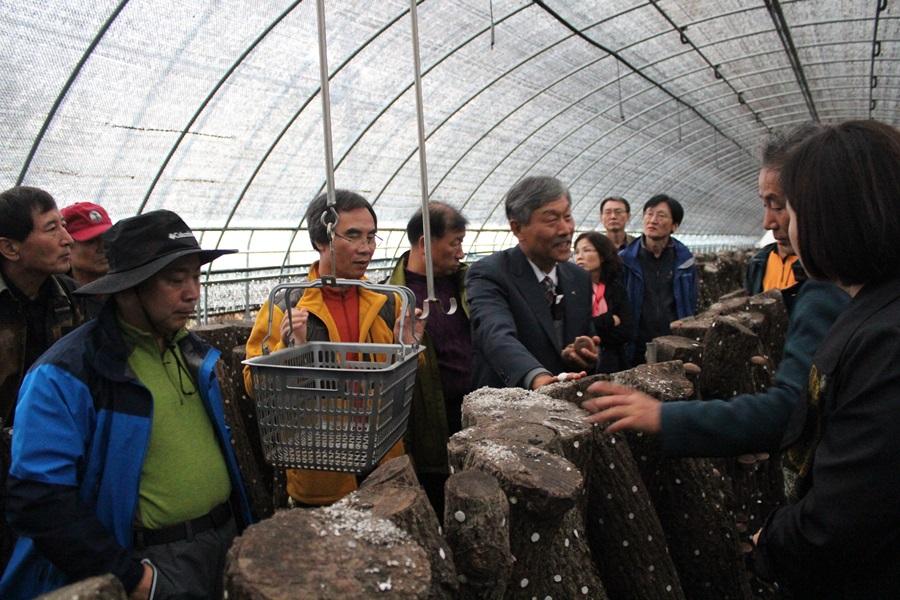 한국산림아카데미 수강생들이 비닐하우스 안에서의 표고버섯 재배방법에 대해서 설명을 듣고 있다.