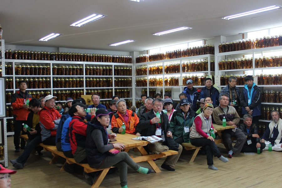 한국산림아카데미 수강생들이 산양삼 가공공장을 방문해서 실습을 하고 있다.