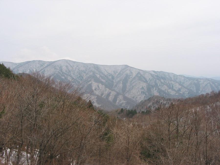 오대산 동대산 능선 서쪽 사면에서 바라본 전경.