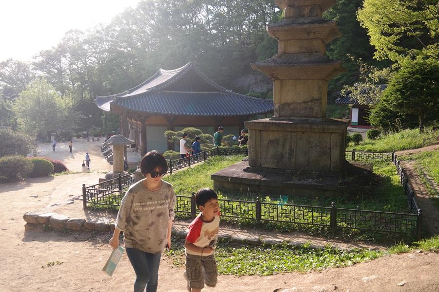 부석사 삼층석탑 옆으로 모자가 지나가고 있다.