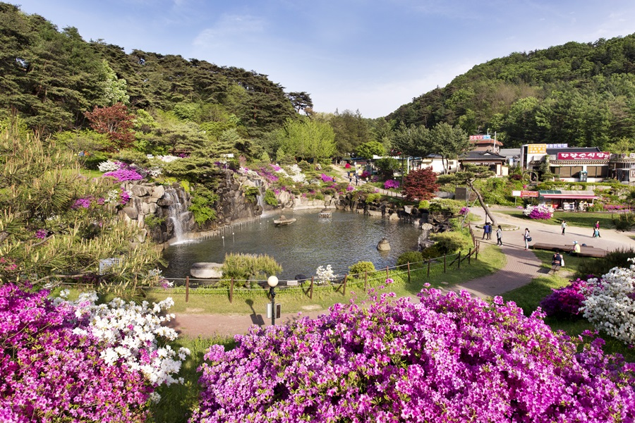 부석사 입구엔 연못과 더불어 철쭉이 화려하게 피어 방문객을 화사하게 맞아준다. 5월이 절정이다.