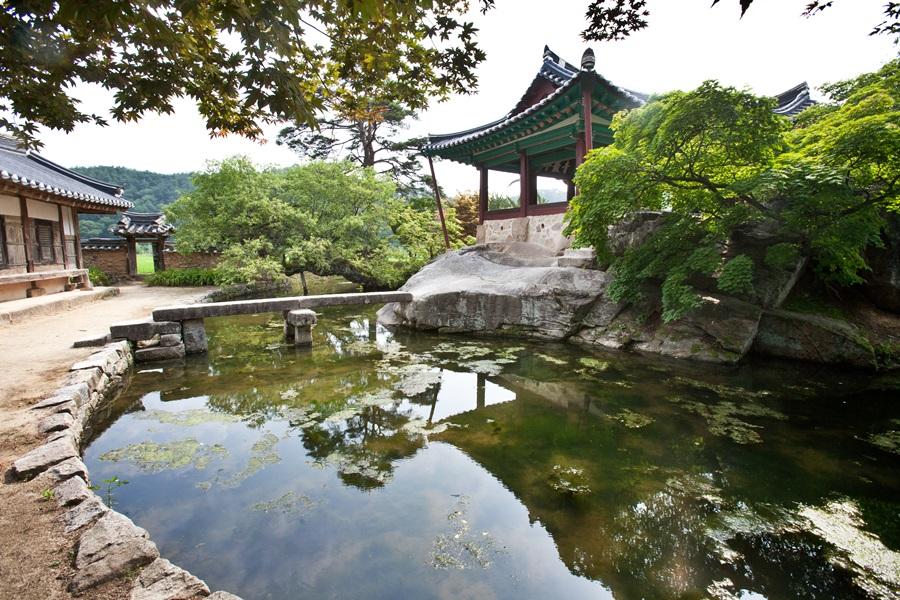 한국의 10대 정자 중의 하나로 꼽히는 닭실마을의 청암정의 모습. 충재 권벌 선생이 고향이 내려와 은거하던 중에 지었다고 전하는 청암정은 거북바위 위에 정자를 지어 더욱 운치를 자아낸다.