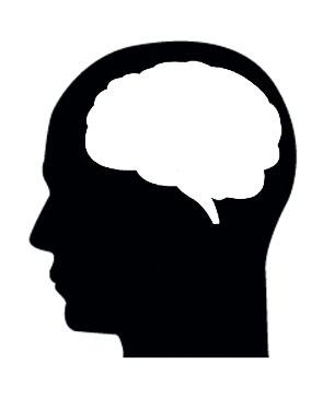 뇌의 공간에 뭔가를 채워넣는 작업은 명상을 통해 할 수 있다.