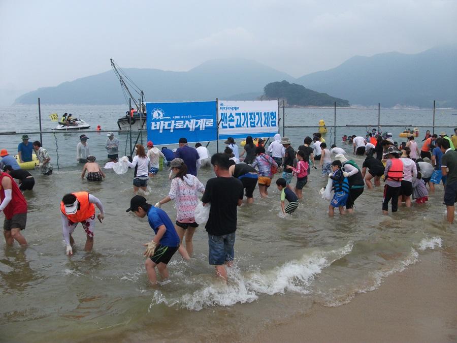 바다로세계로 축제 참가자들이 맨손고기잡이 체험을 하고 있다.
