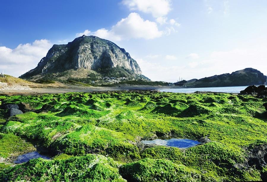 산방산은 용머리와 함께 제주에서 가장 오래된 화산지형이다.