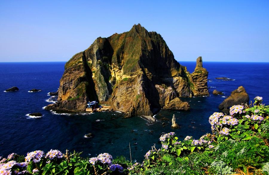 해국이 만발한 독도 국가지질공원의 아름다운 모습.