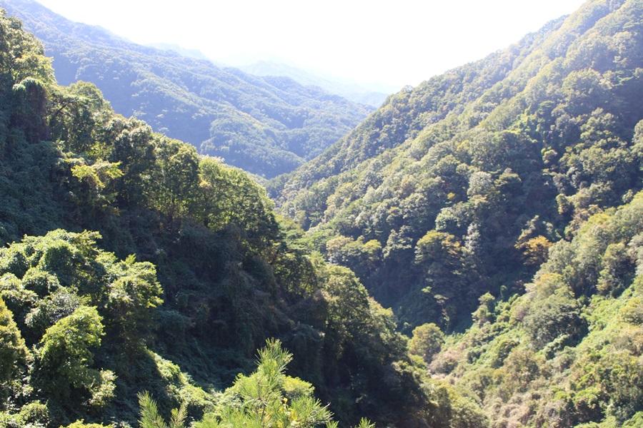 마치 설악산의 천불동계곡을 연상케 하는 지리산 구룡계곡 협곡이 길게 뻗어 있다.
