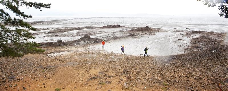 서산 아라메길은 때로는 해변길로도 걷는다.