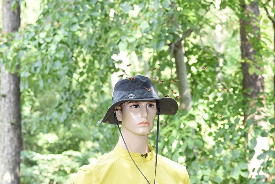 검은 모자를 쓰고 밝은 색 옷을 입고 가면 모자에만 집중 공격성을 보인다.