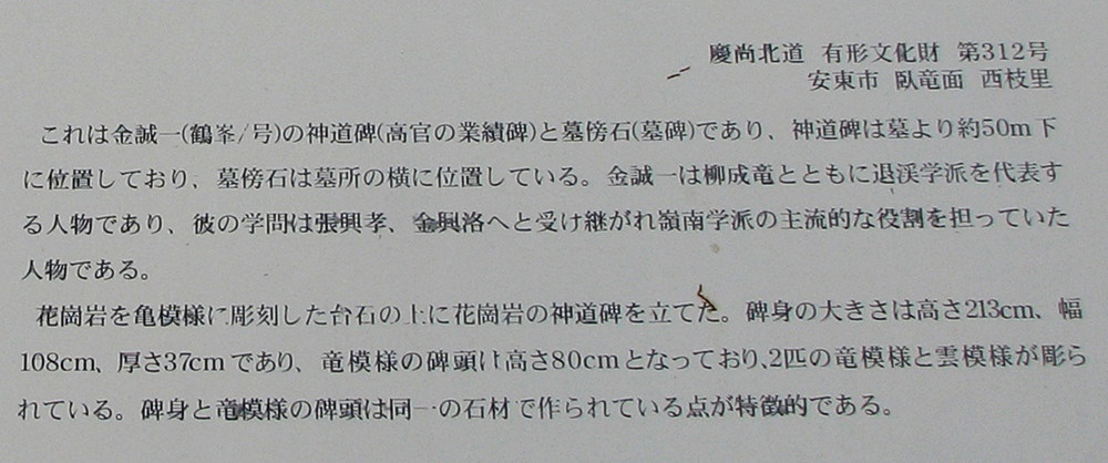 IMG_4579-3