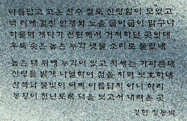 SAM_2164a