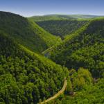 Pine creek gorge, PA.
