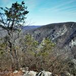 1 (Lenape lake trails)