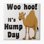 Hump-Day-Happy