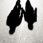 shadow 1-2